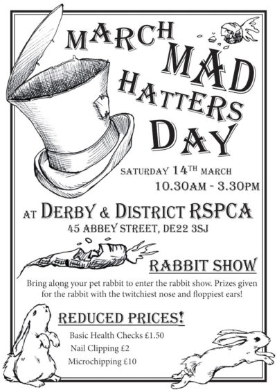 Event poster design and illustration for Derby & District RSPCA