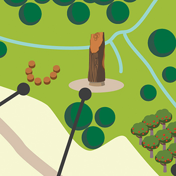 Map illustrations for Stoney Wood, Wirksworth