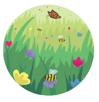 An illustration showing bees and butterflies foraging for food in a wild flower meadow