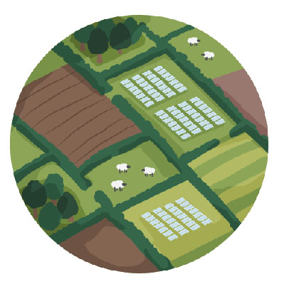 An illustration showing fields and hedgerows connecting to the solar park. Wildlife corridors.